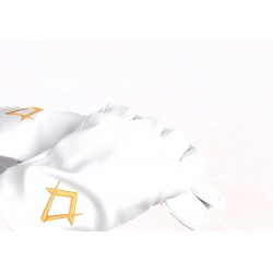 Freemason Masonic Gloves In Real Kid Leather With Gold S & C